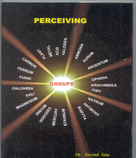 Click for details about Perceiving Groups book